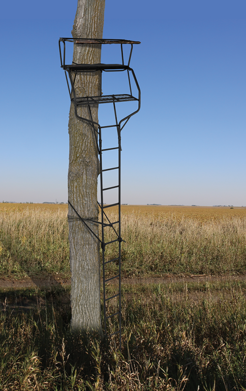 The Guardianxlt Treestand Two Person Ladder Stand Huntsports